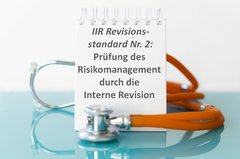 Prüfung des Risikomanagement durch die IR: Implikation des IIR-Revisionsstandards Nr. 2
