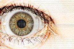 Risiken im Cybergeddon: Mangelndes Bewusstsein für Industriespionage