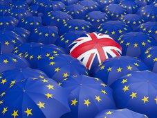 Brexit: Risiko einer totalen politischen Krise