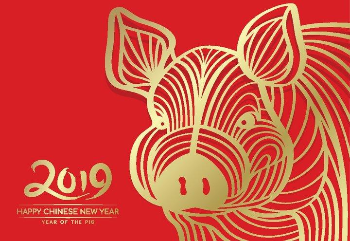 Jahr Des Erd Schweins