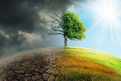 Regulierung zur Nachhaltigkeit nimmt Fahrt auf: Stresstests, Szenarioanalysen und Frühwarnindikatoren für Klimarisiken