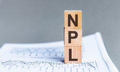 NPL-Forum: Risikopotenzial von Non-Performing Loans