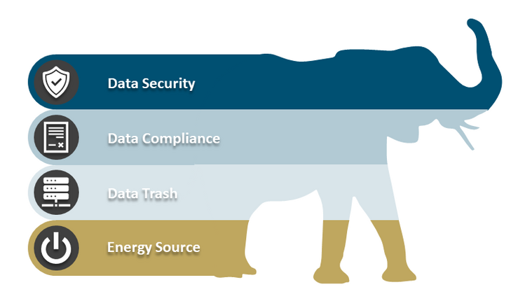 Figure 2: ESG in Data Sustainability [Source: ifb]