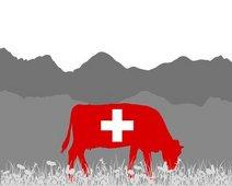 Risikoanalyse Schweiz