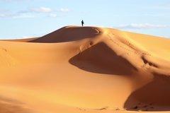 Der falsche Policy-Mix: Ein Rufer in der Wüste, auf den niemand hört