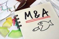 """Tagesforum """"Zukunftsorientierte Steuerung"""": Risiken von M&A-Projekten bewerten"""