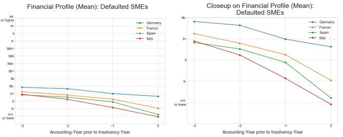 Figure 2: Financial profile: Defaulted SMEs & MidCaps [Source: Euler Hermes Rating GmbH]